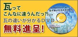 画像に alt 属性が指定されていません。ファイル名: side_dvd.jpg